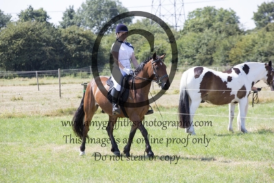 Class 5: Novice Pony