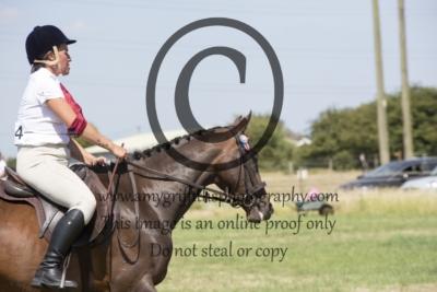 Class 9: Racehorse to Riding Horse
