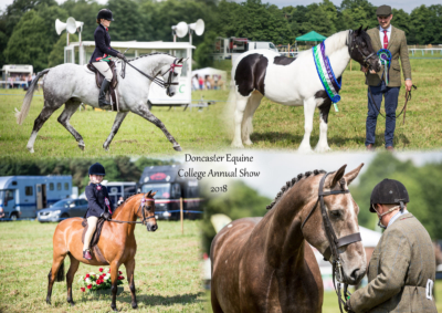 Doncaster Equine College Annual Show