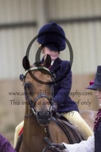 Class 56: Lead Rein Show Pony