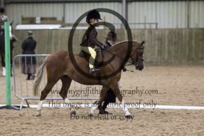 Class 57: Lead Rein Show Hunter Pony