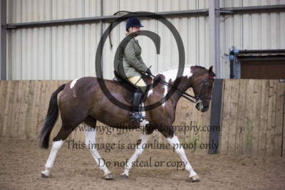 Class 69: Hack/Riding Horse