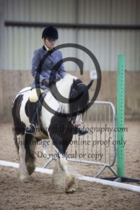 Class 6: Novice Horse or Pony