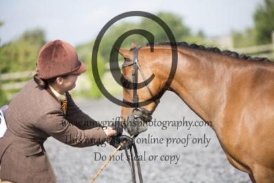 Class 46: Hunter Pony Inhand