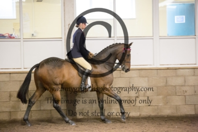 Class 33: Riding Horse & Hacks