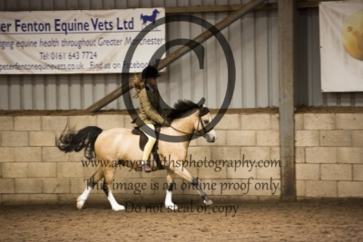 Class 43: Riding Club Horse/Pony