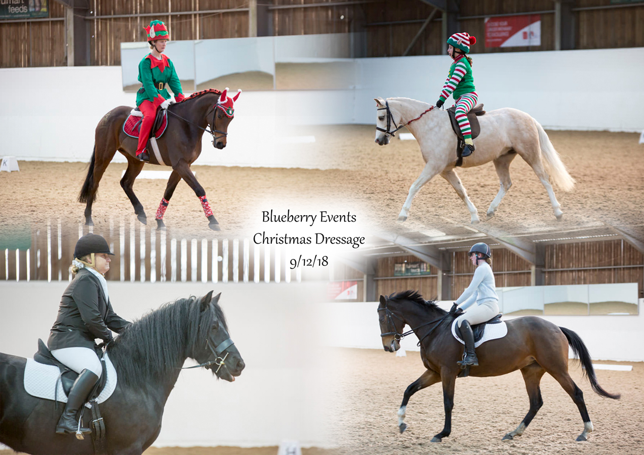 Blueberry Events Christmas Dressage