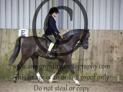 Overall Supreme Ridden in Show