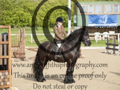 Class 47 – Ponies not exceeding 133cm but over 122cm