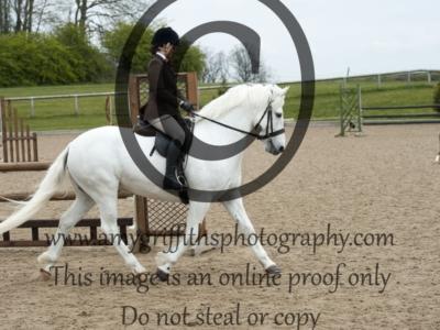 Class 50 – RIHS Ponies exc 143cm
