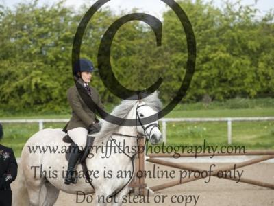 Class 48 – Ponies exceeding 133cm but not 143cm