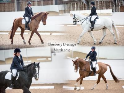 Blueberry Dressage – March