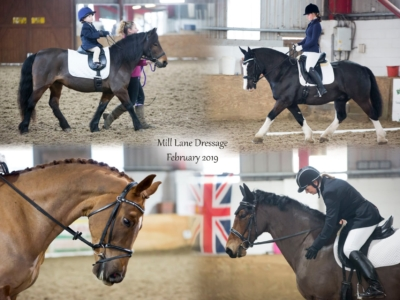 Mill Lane Stables Dressage – February
