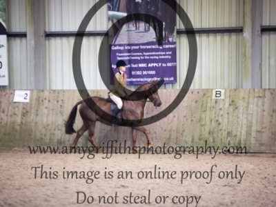 Class 35: BSPS Mixed Height Novice Show Hunter Pony