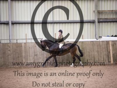 Class 45: Riding Horse