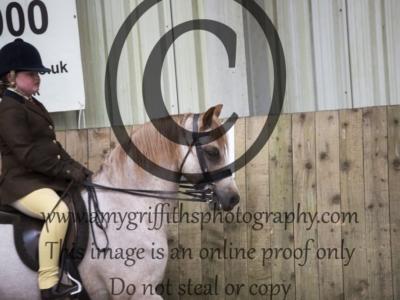 Class 57: Ponies UK M&M Small Breeds