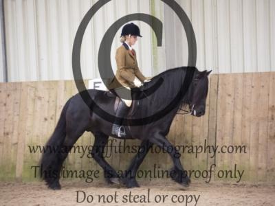Class 60: Ponies UK Amateur Ridden M&M