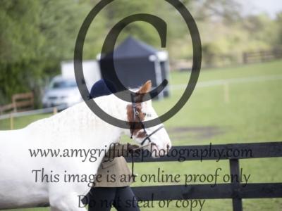 CLASS 3. CHAPS (UK) Open Youngstock Qualifier