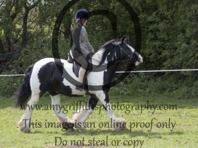 CLASS 21. CHAPS (UK) Native/Cob/Traditional Ridden Pony