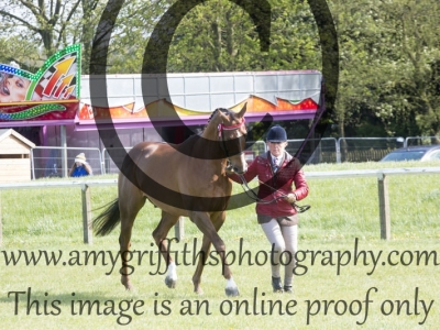 Class  45 – Racehorse – Blemish and all