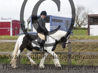 Class 22:  CHAPS Ridden Novice Pony
