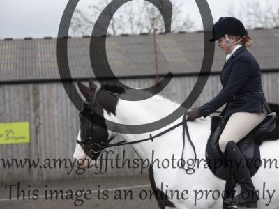Class 21:  CHAPS Ridden Novice Horse
