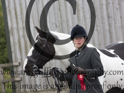 Class 92: Best Condition Horse or Pony