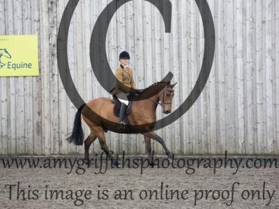 Class 36: Novice Show Hunter Pony