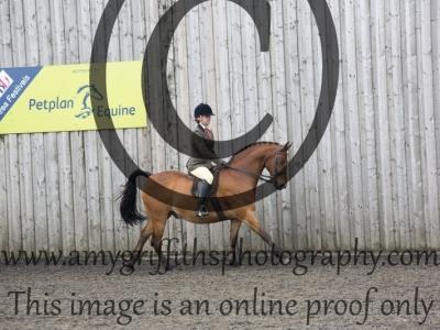 Class 37: Open Show Hunter Pony