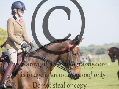 Class 22 – Ridden Retrained Racehorse Class