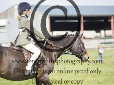 Class 27 – Best Pony Club Pony 13-15hh
