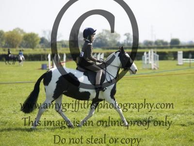 Class 18 – Working Hunter Pony Under 13hh