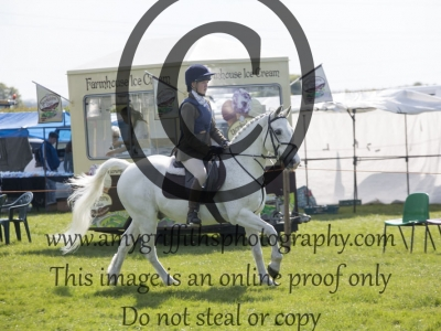 Class 19 – Working Hunter Pony 13-15hh