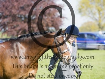 Class 11 – Best Condition Pony