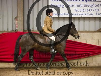 Class 30: Riding Club Pony