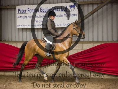 Class 31: Riding Club Horse