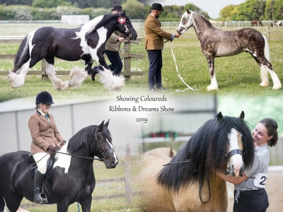 Showing Coloureds Ribbons & Dreams
