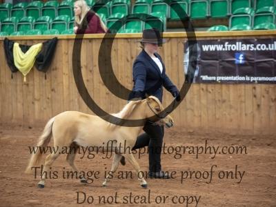 Class 44 – Royal International Horse Show Mini