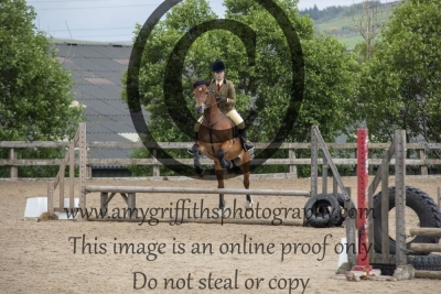 W4: Newly Broken Horses & Ponies