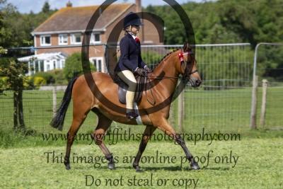Class 15 – BSPS Mixed Height Novice Show Pony