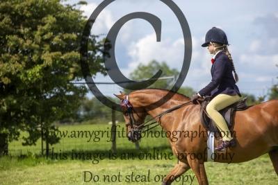 Class 17 – BSPS Show Pony not exc 138cm