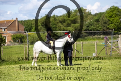 Class 19 – BSPS Leading Rein Pony