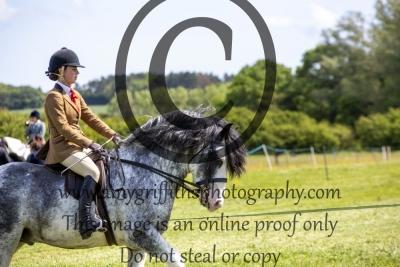 Class 4 – CHAPS Novice Ridden Pony Qualifier