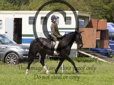 Class 28 – BSPS Open Show Hunter Pony 153cm
