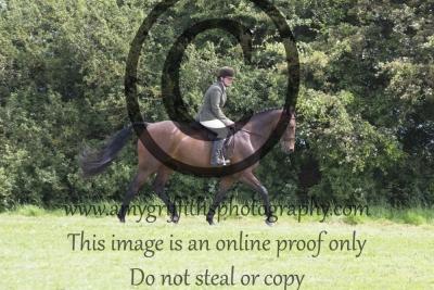 Class 13 – Riding Horse