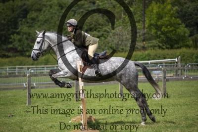 Class 95 – Novice Working Hunter Horse