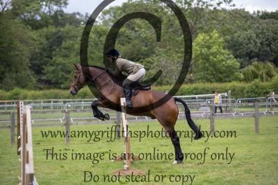 Class 96 – Open Working Hunter Horse