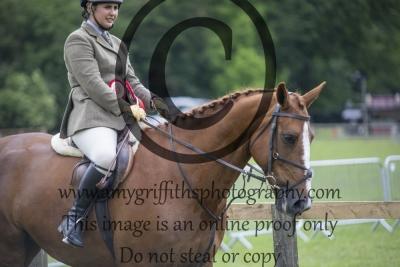 Working Hunter Horse Championship