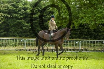 Class 33- Open Riding Horse