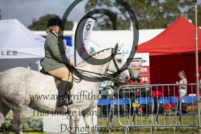 Class 14 – B Crabtree Agri Services / Equifest Open Small Hunter
